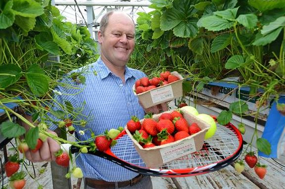 Lancashire food lovers can enjoy delicious local strawberries picked the very same day, thanks to growers Medlar Fruit Farms of Kirkham and Flavourfresh in Banks.    The sweet treats will be available daily in Booths in Burscough and Hesketh Bank, having been picked every morning at 6am and...