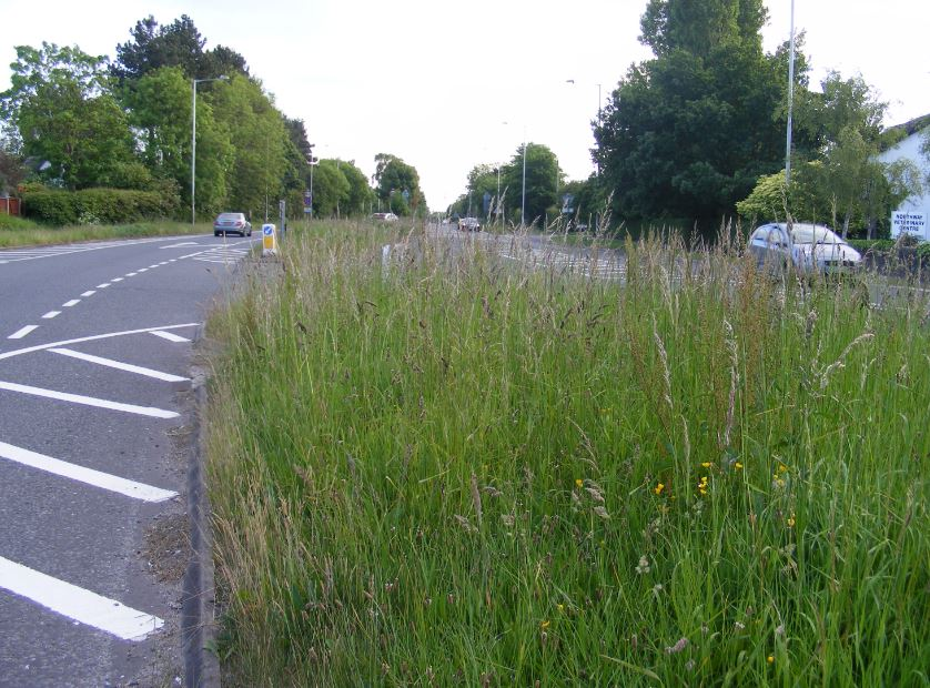 Following a review of its ground maintenance and street cleansing services, West Lancashire Borough Council is considering plans to create a new 'Clean & Green' service.         Later this month, Council at its meeting on 12 December 2018 will be asked to consider plans to restructure the service,...