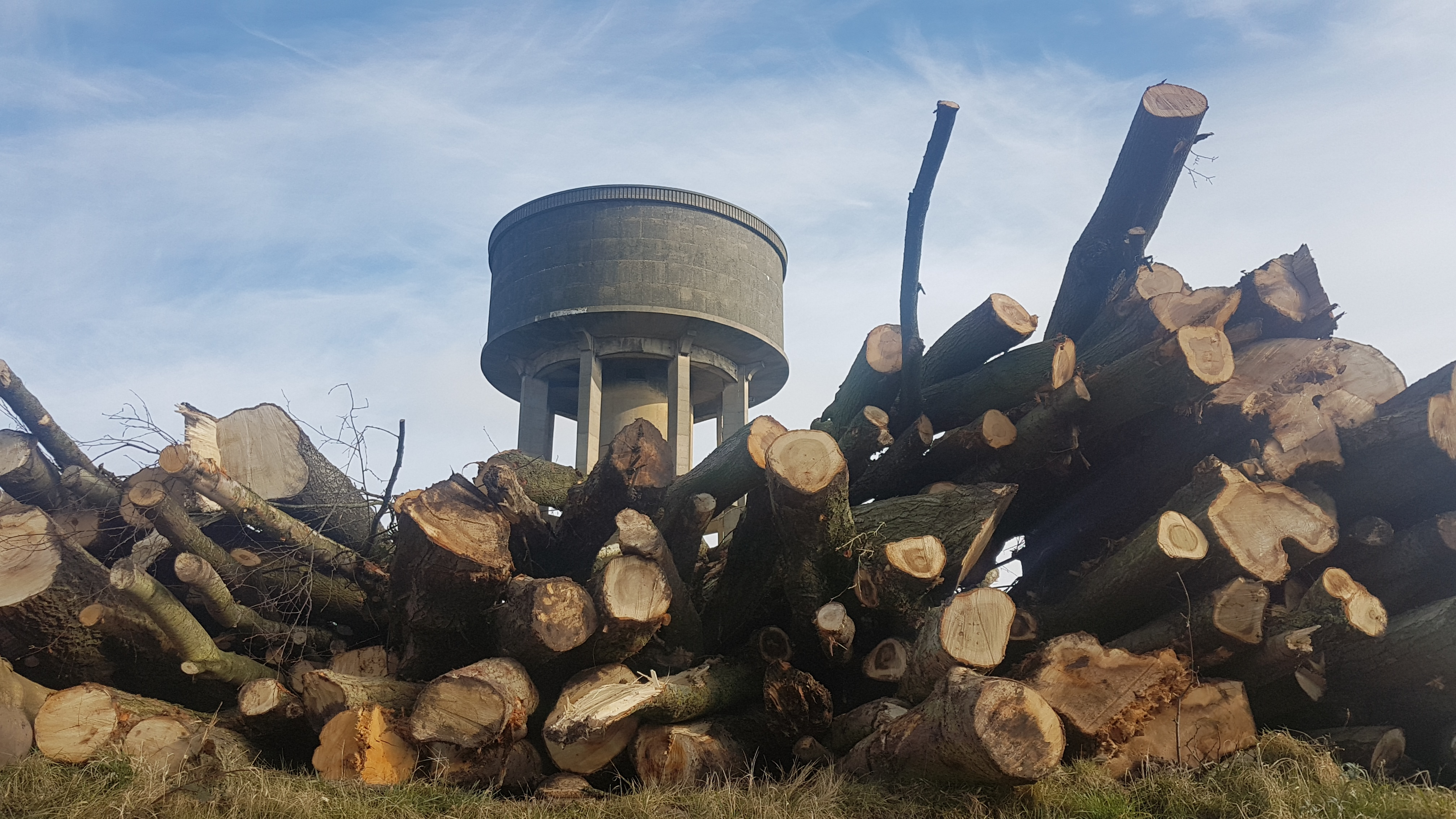 Hundreds of trees have been felled at the site of the old Greaves Hall Hospital to make way for 128 dwellings.    Contractors working for Seddon Homes have started to clear the land that will also see the demolition of the site's iconic water tower, too.    A local resident told Qlocal: