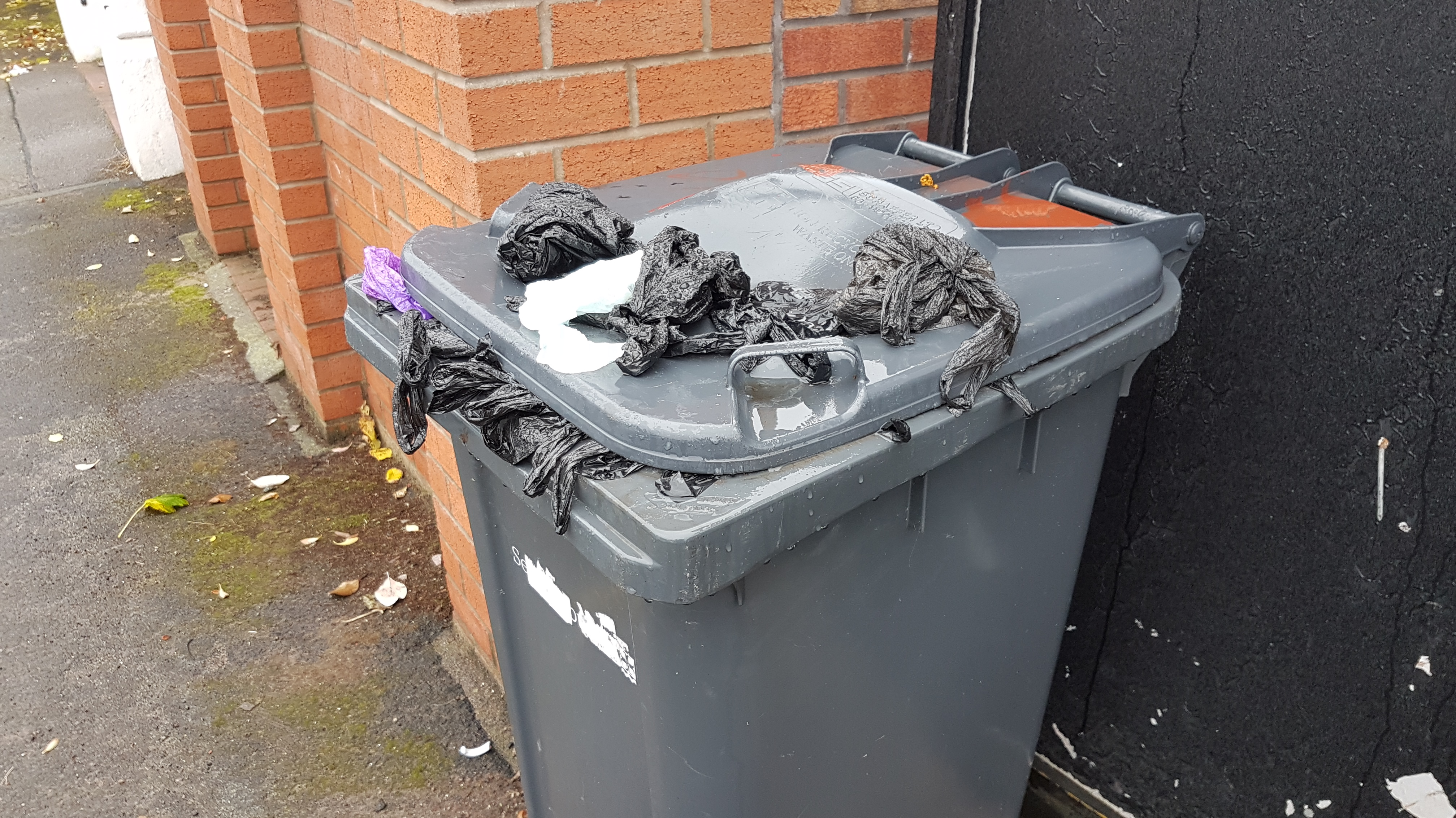 Thoughtless dog owners have filled a wheelie bin in Oxford Road with bags of dog poo.    The bin is now full so the dog owners have now started to place bags of poo on the lid.    Sefton Council have been informed of this health hazard.