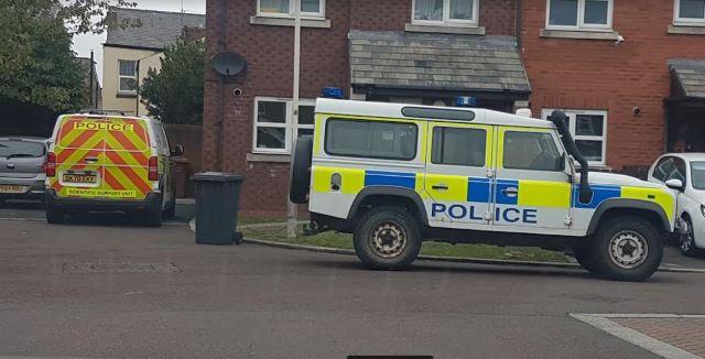 Name:  Police Viking Close[62269].jpg Views: 0 Size:  40.6 KB