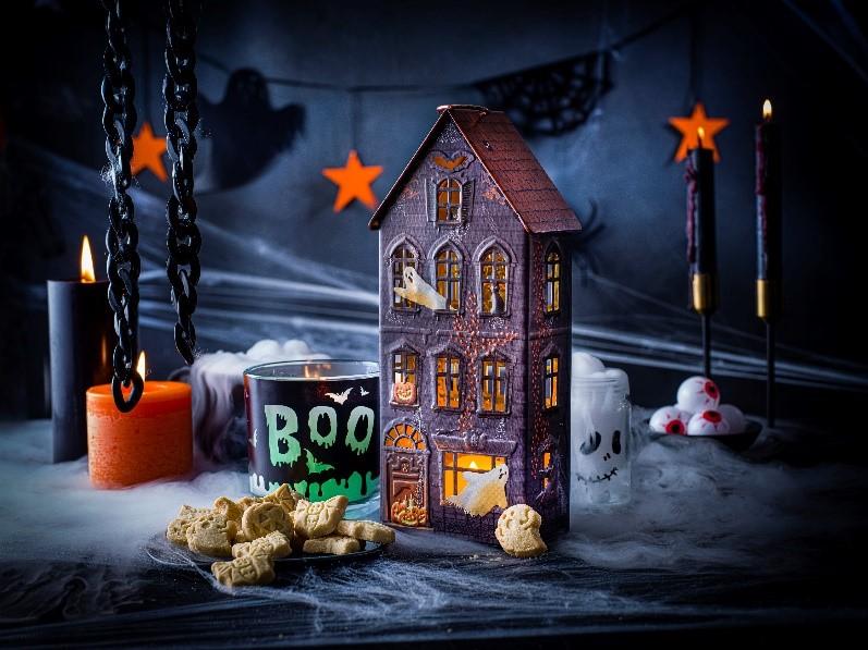 Name:  Halloween Light Up House.jpg Views: 0 Size:  133.1 KB