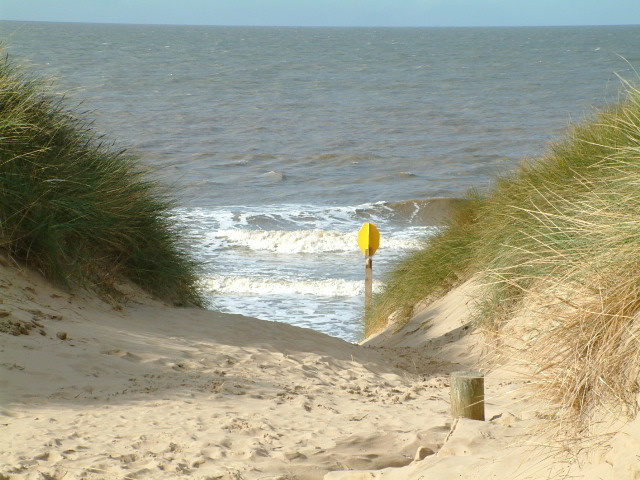 Sefton Council is seeking formal approval to transfer land at Formby Point to the National Trust.        In March 2017, Sefton Council announced discussions had taken place regarding the potential transfer of land at Lifeboat Road and Ravenmeols from SeftonÂ's ownership to The National Trust.    A...